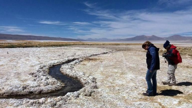 CNG cumple metas y aprueba auditoria del proyecto Más Agua en recuperación de bofedales